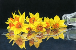 spilled bouquet 29x41 colour pencil